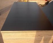 辽宁建筑木胶板