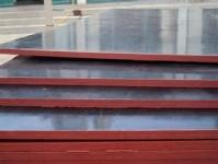 辽宁柳桉面木胶板