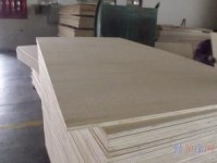 杨木面包装箱板